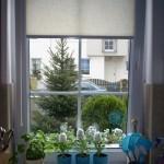 okna kuchenne